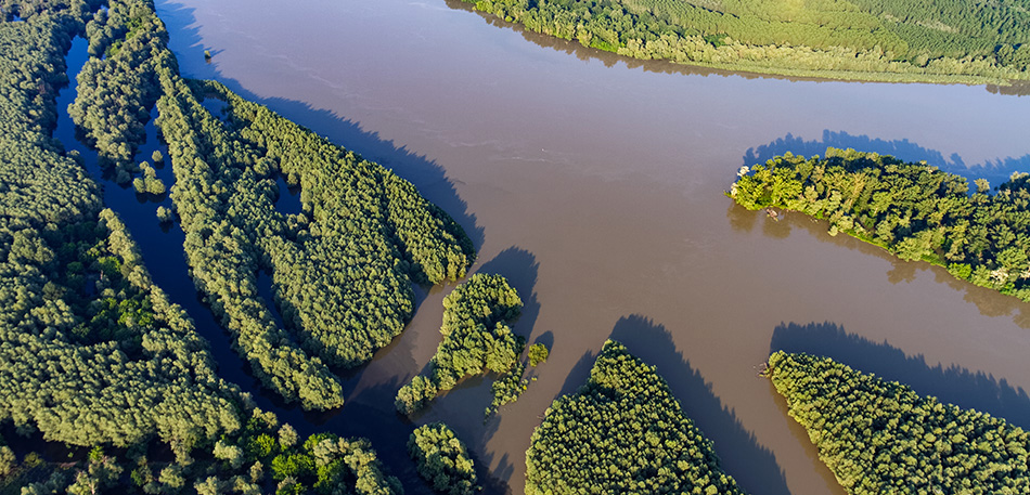 Nizinske rijeke