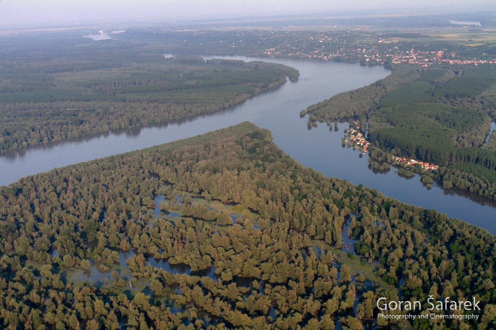 rijeka, dunav, poplavna šuma, kopački rit, aljmaš, ušće, Drava