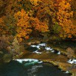 VIDEO: Mrežnica u jesen u 4k